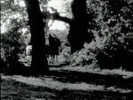Robin Hood 025 – The Deserted Castle - 1956 Image Gallery Slide 3