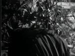 Robin Hood 034 – The Traitor - 1956 Image Gallery Slide 6