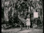 The Wonderful Wizard Of Oz - 1910 Image Gallery Slide 3